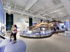 The new water gallery contains an installation of the museum's beloved skeleton of an enormous blue whale. Maris Mezulis