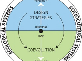 Figure 1--Generic model describing the relationship between Design Strategies and Coevolution