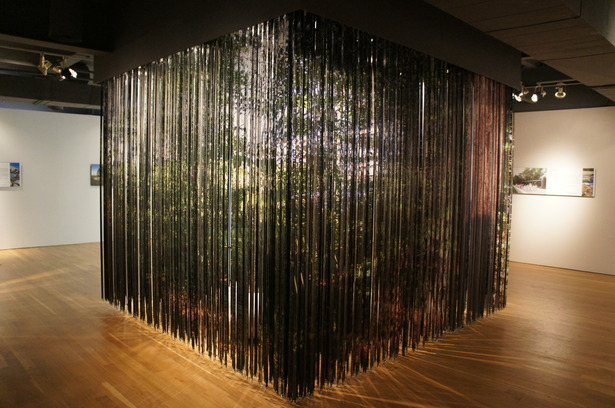 lenticular curtain by PLANT architect. photo by john ota.