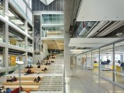 Generous interior glazing allows for daylight to enter through the labs and corridors, opening views across floors.