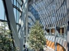 Sky Gardens bring light and foliage to upper-storey offices.