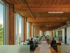 Above the second floor, the building is framed in FSC-certified glulam timbers. Nic Lehoux