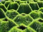 vermilion sands' geometric landscape pattern