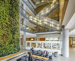 2014 interior green wall award winner: university of ottawa social sciences building by diamond schmitt architects, KWC architects & NEDLAW living walls