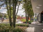 Bendy Straw Trellis at Mid Main Park, Hapa Collaborative. Category: Urban Elements.