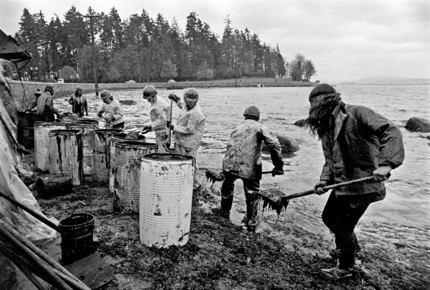 Improvised oil-spill cleanup at Stanley Park, Vancouver,1973. Photograph by John Denniston