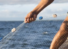 In poor Philippines coastal villages in and around Danajon Bank where marine life and reefs are endangered, fishermen gather and bundle discarded nylon nets (which would otherwise last for 600 years) for shipment to yarn supplier Aquafil, which developed certain nylon recycling technology