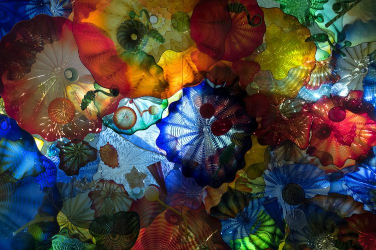 Dale Chihuly At The Royal Ontario Museum Canadian Interiors