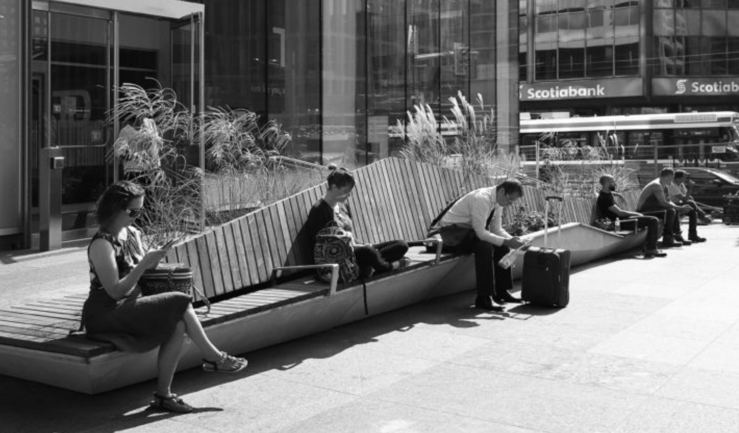 "The ""Ravine Bench"" at Yonge + St. Clair. Image via Slate Asset Management."