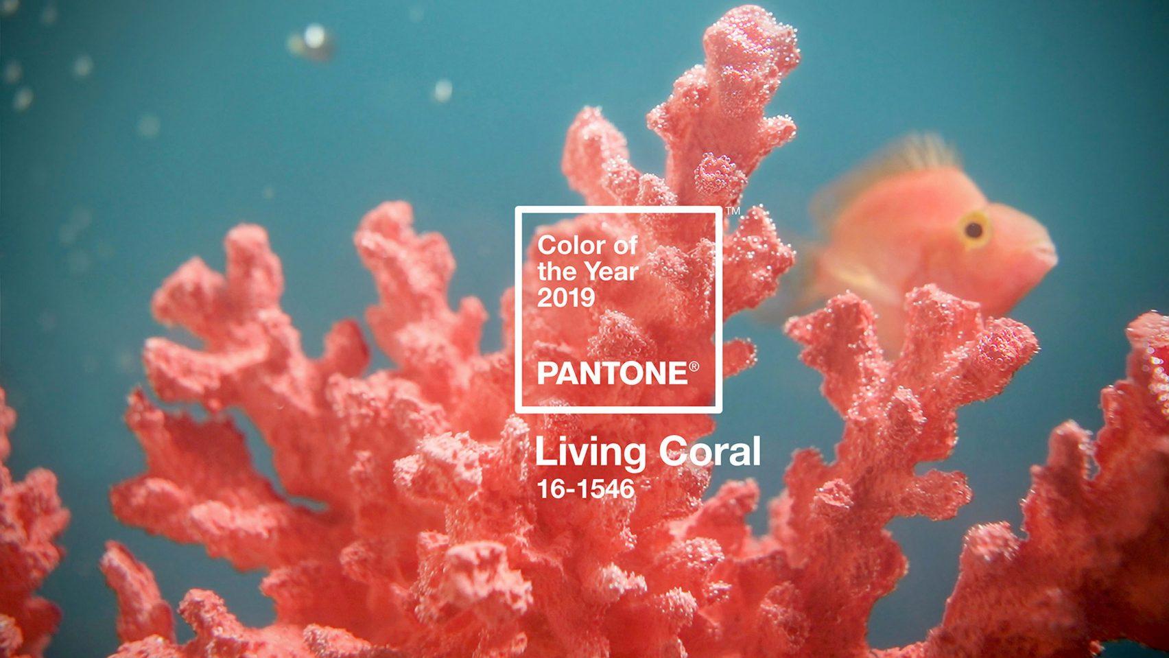 Living Coral, Pantone