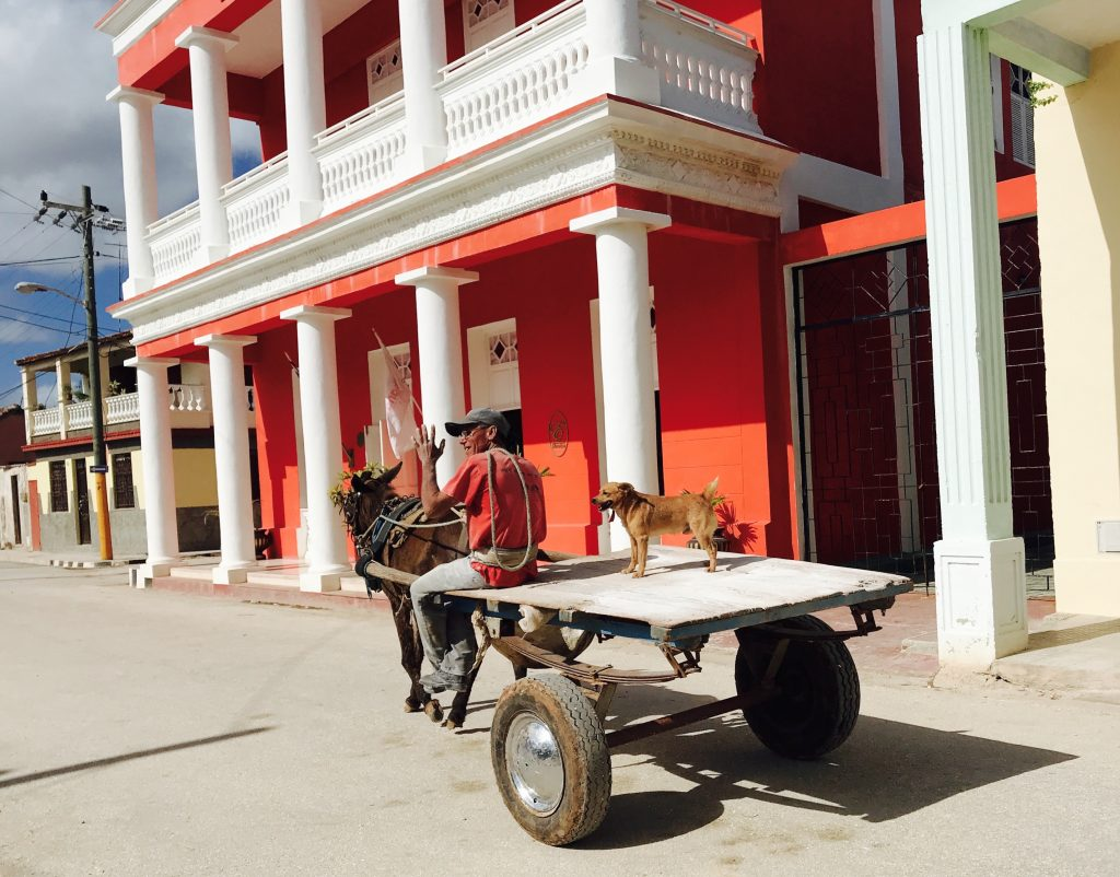 A dog going for a ride on a horse-drawn cart in Gibara.