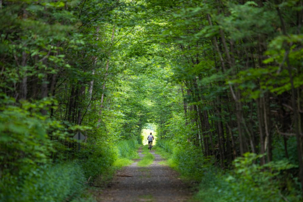 Cyclist on shady forest trail Ontario