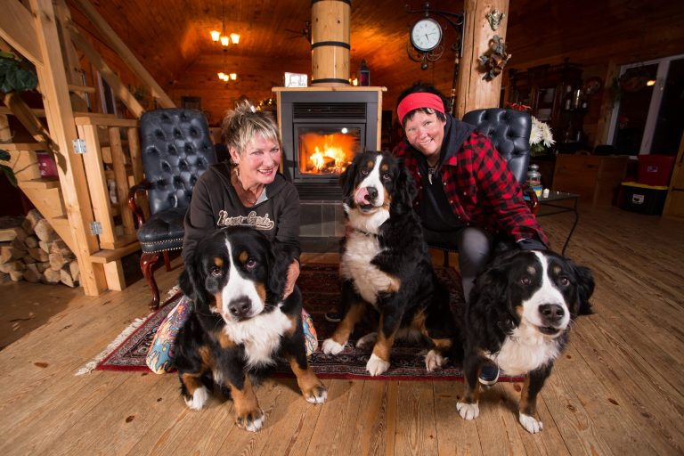Domain Summum, dog hotel, Mont-Tremblant, Quebec