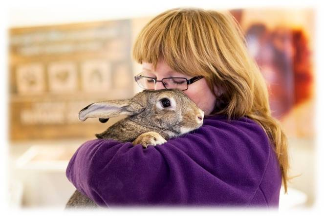 Cochrane & Area Humane Society (CAHS) | Community Knowledge