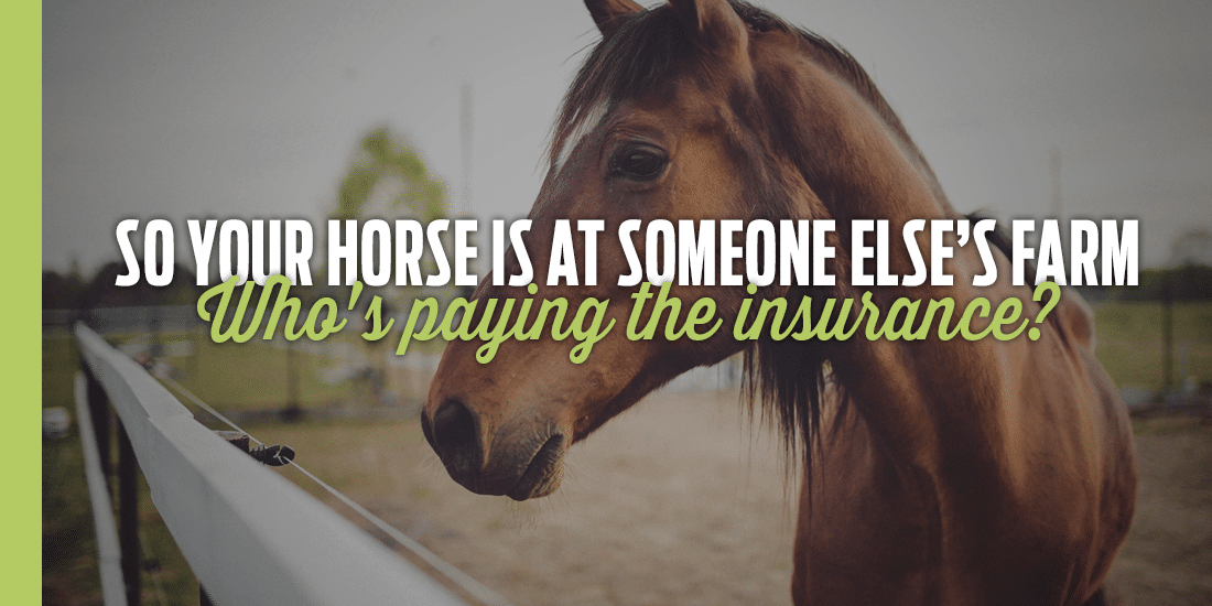 So you keep your horse at someone else's farm. Do you know who should be paying the insurance?