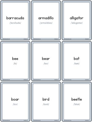 Preview of Words with IPA, Small