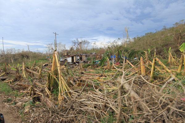 Crisis-PH-Haiyan-10