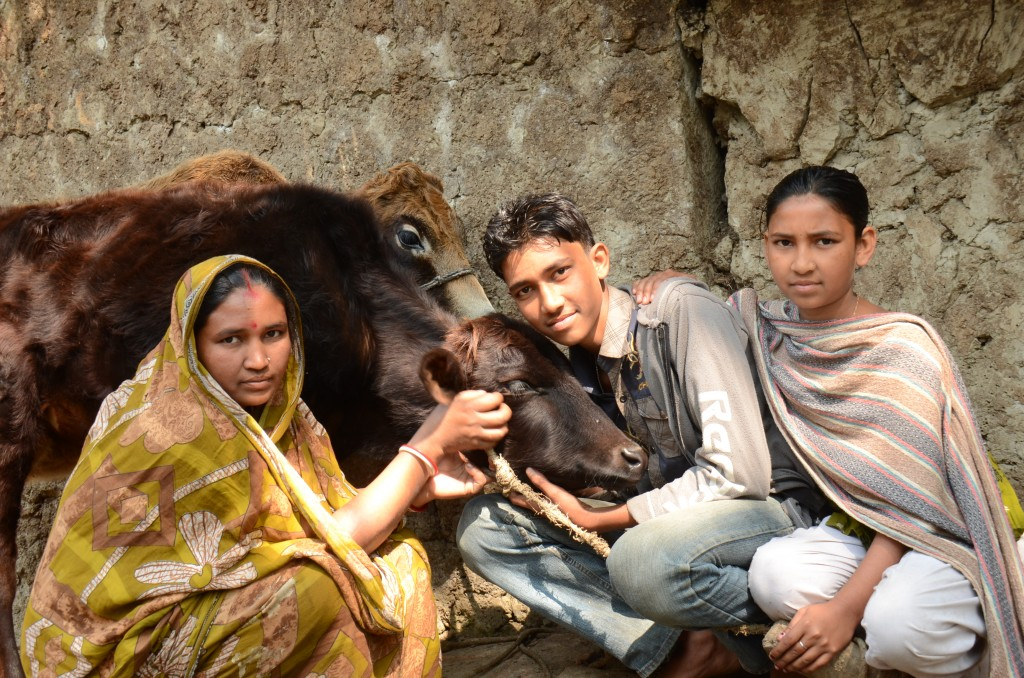 Shimul Das sits in front of his home with his mother and his sister and their two brown cows
