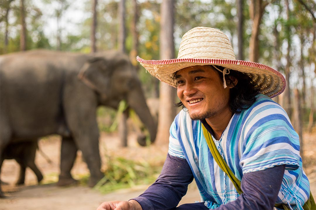 A Compassion graduate in Thailand who cares for elephants.
