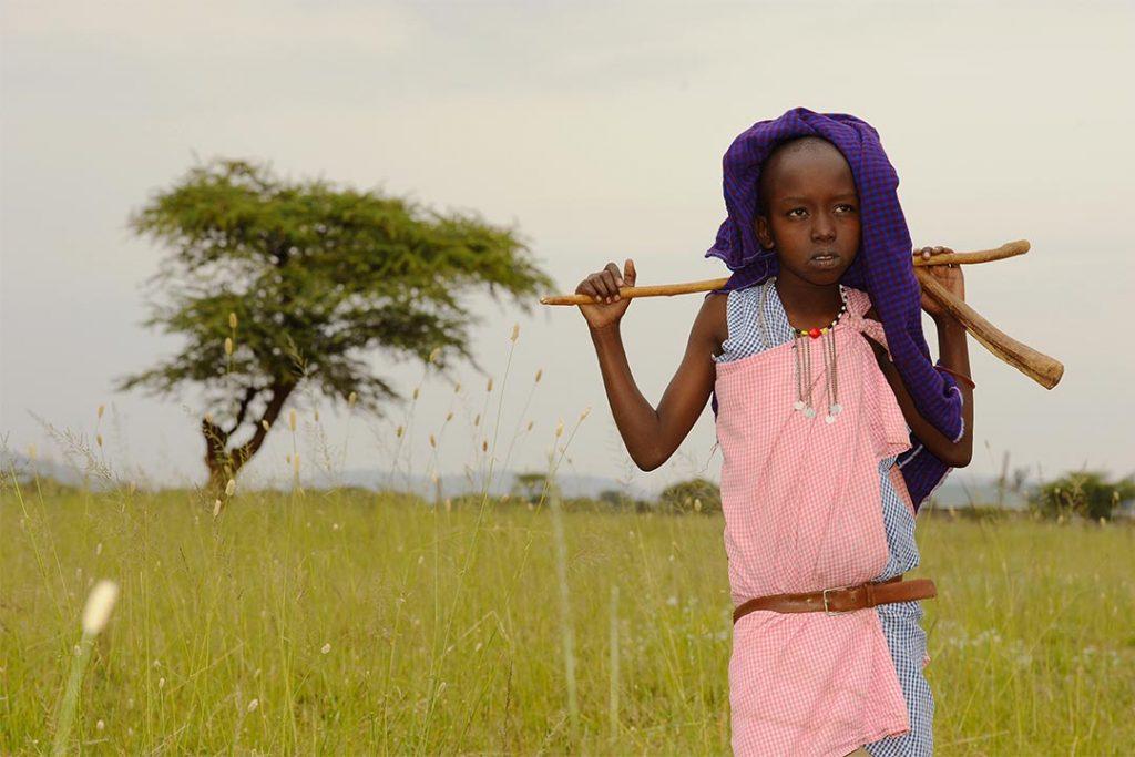 A Maasai boy grazing cattle in Kenya