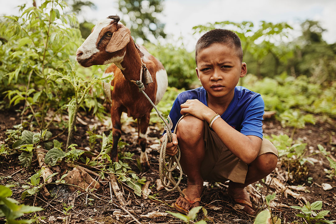 A young Thai boy crouches beside a brown and white goat.