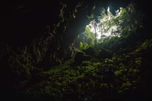 The view into daylight from the mouth of a cave in Thailand.