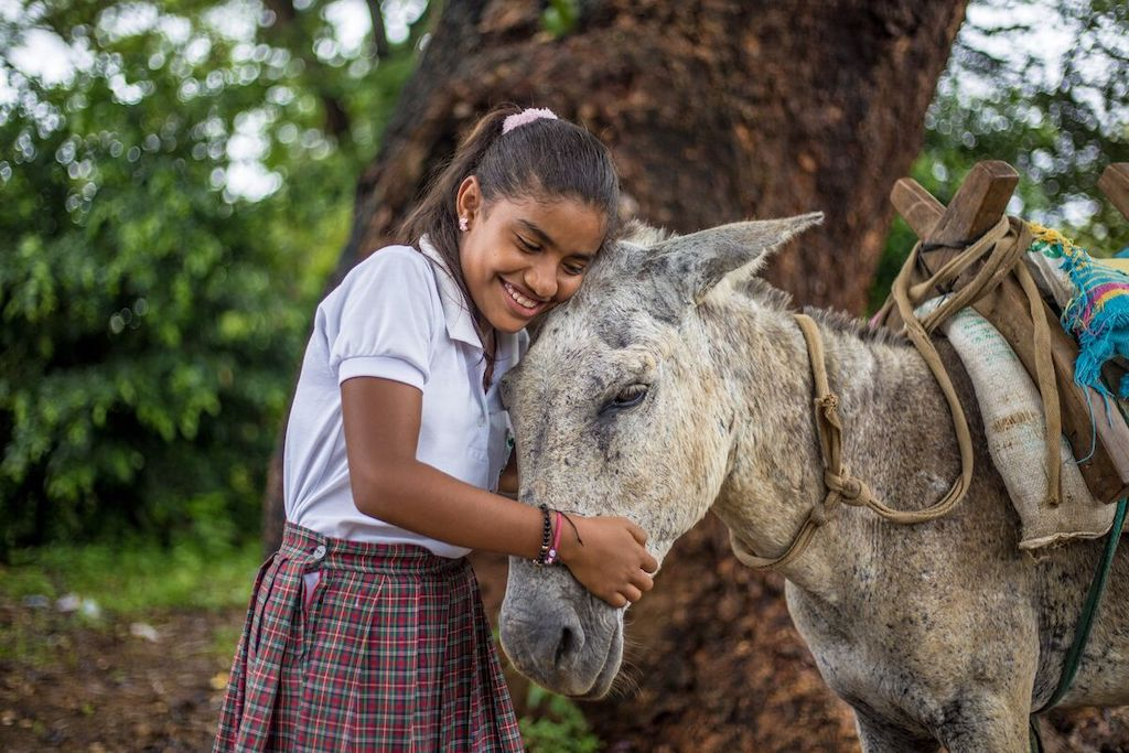 Dianis hugs the donkey that brings her and her brother to school.
