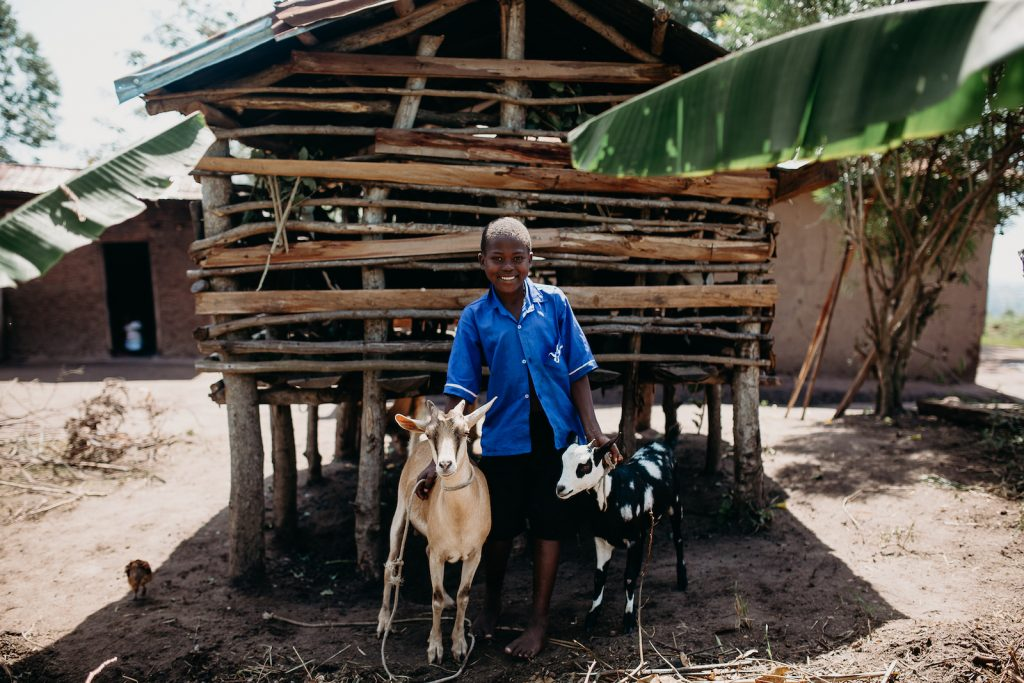 Patience with two goats wearing a blue shirt