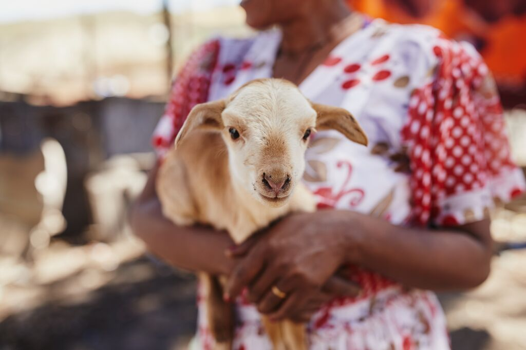 A women wearing a red and white dress is holding a baby goat.