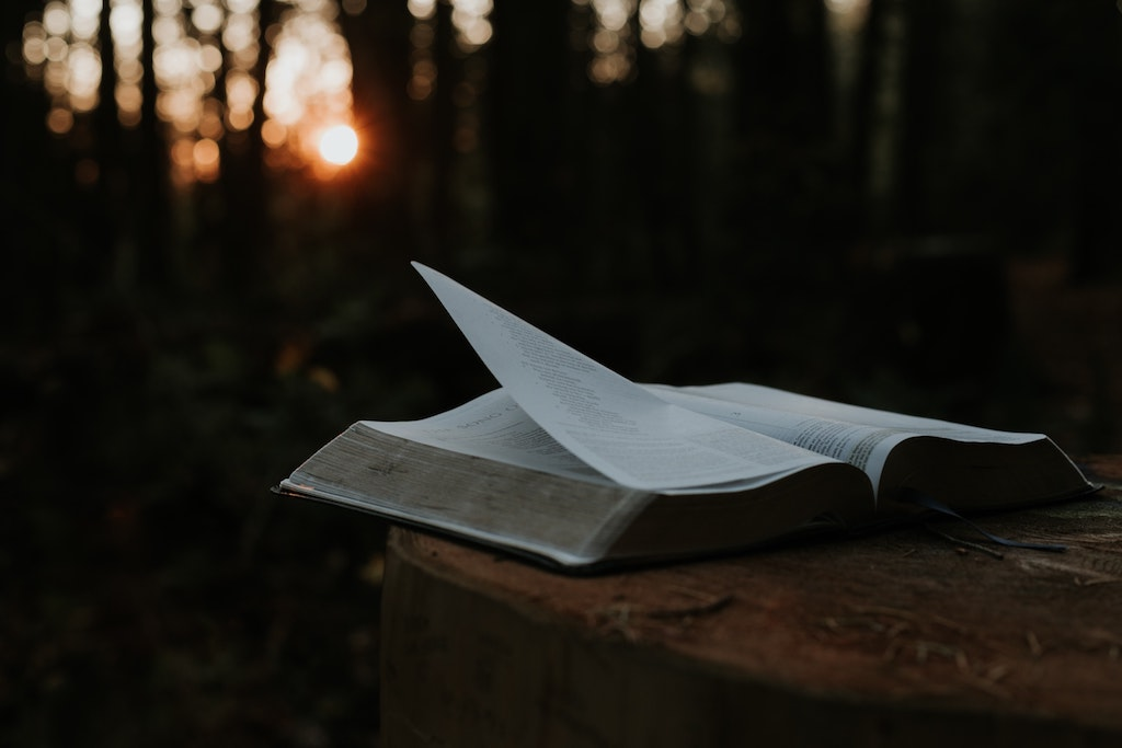 A bible with the pages flying in the wind.
