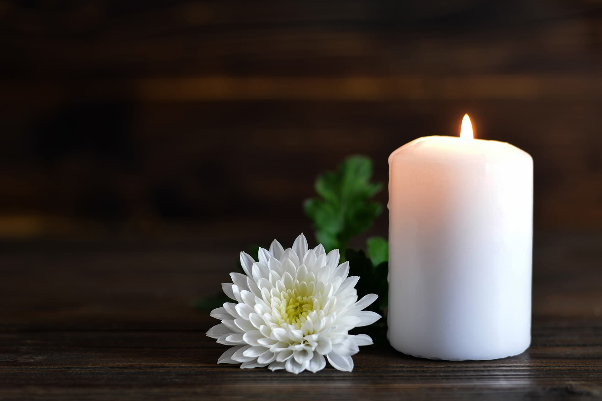 Funeral home insurance with a white flower and white candle