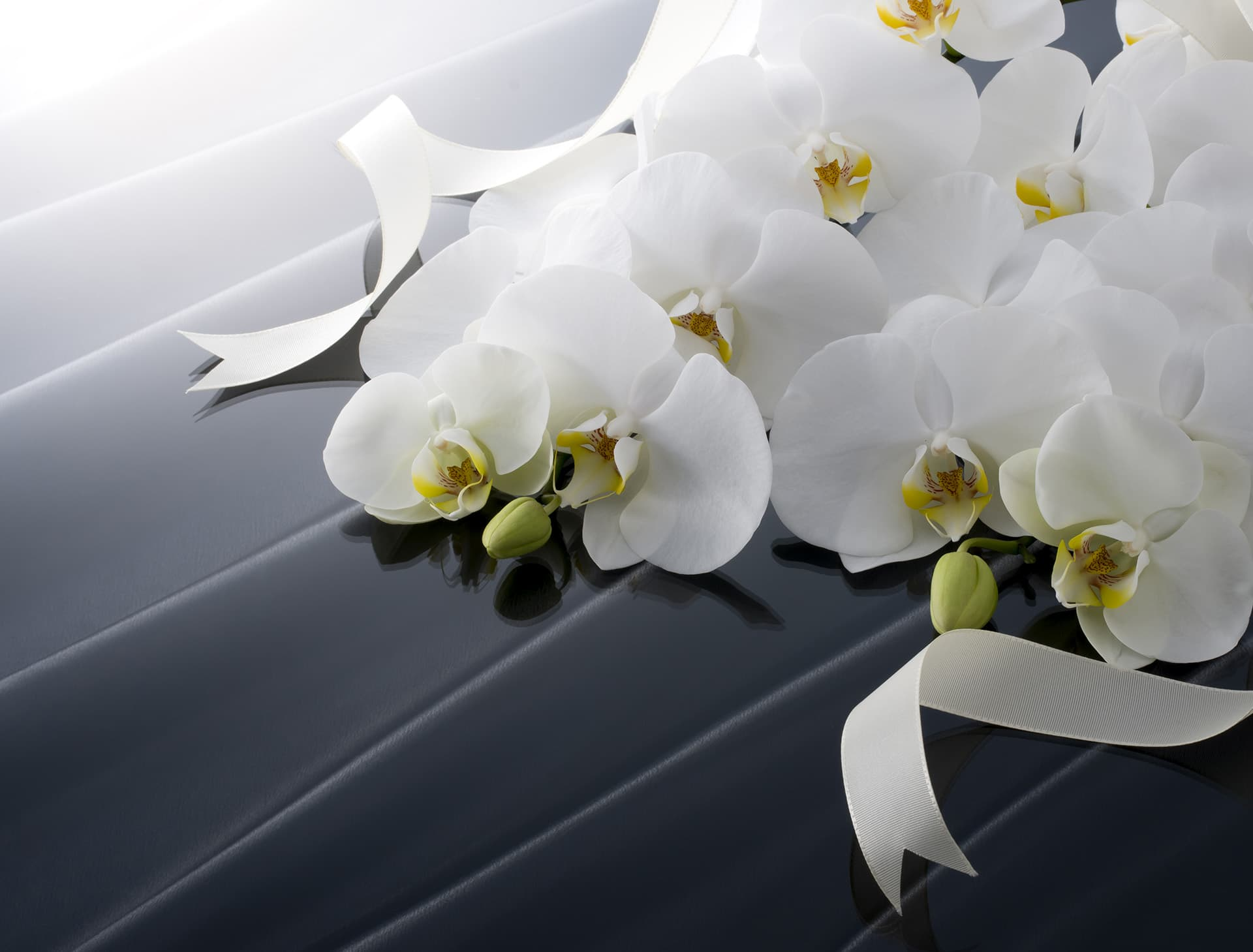 Funeral home insurance with white orchids on a dark casket