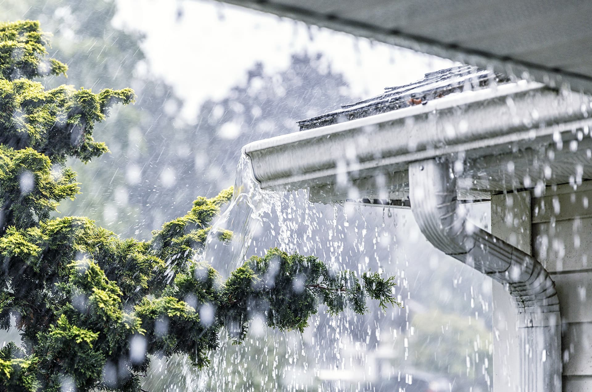 High risk home insurance for home that has an eavestrough overflowing with rain water