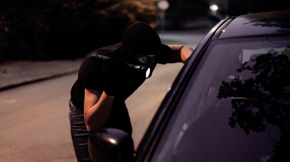 Auto theft image