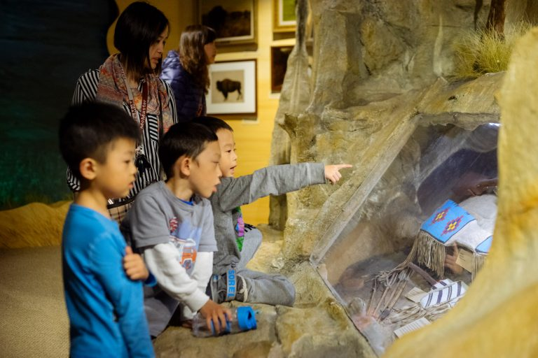 Young boys pointing at exhibit