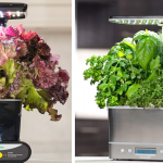 Save up to 35% on an indoor garden from Amazon