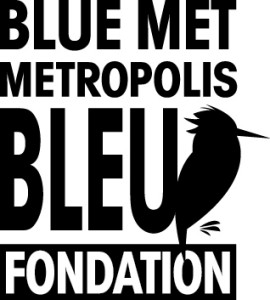 15e anniversaire du Festival Metropolis bleu
