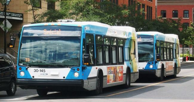 Des bus de la STM infestés par des coquerelles et punaises de lit