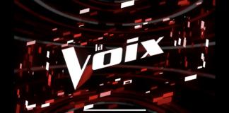 La Voix 2020 : les équipes de la saison 8