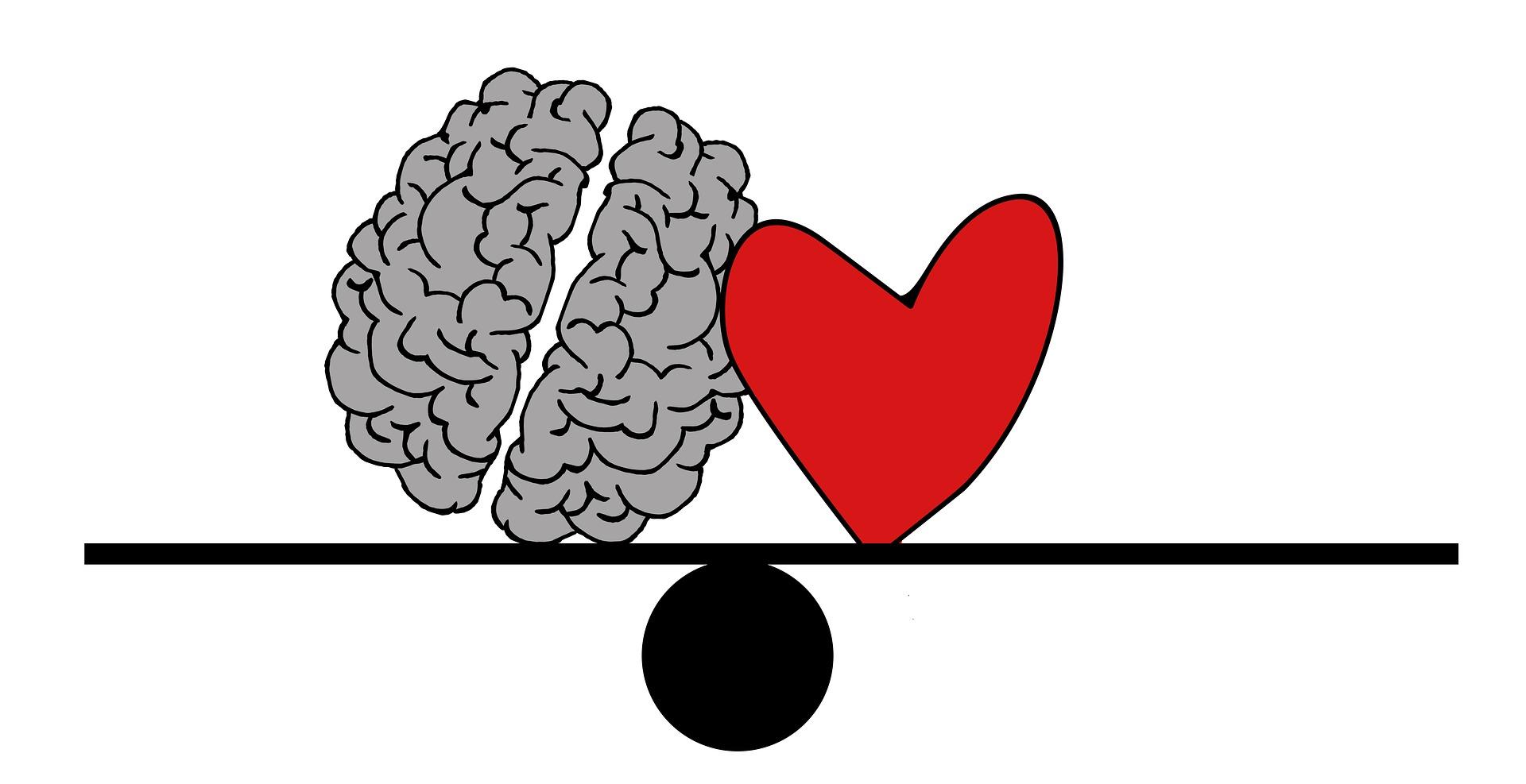cerveau-coeur