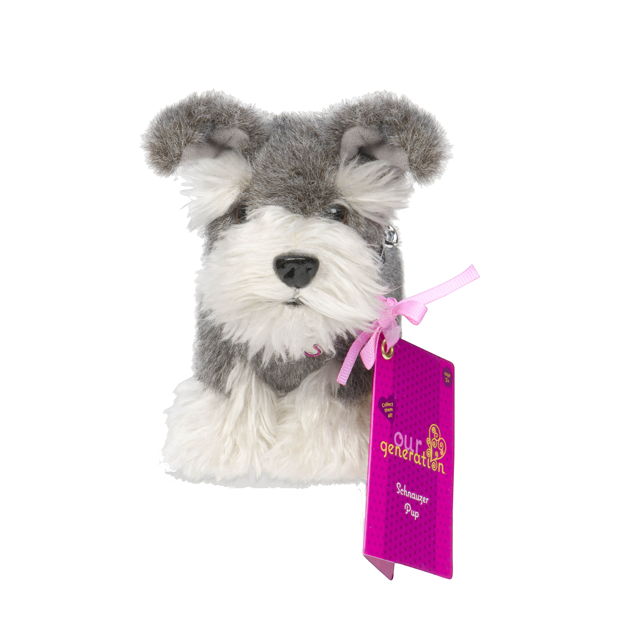 Schnauzer pup package01