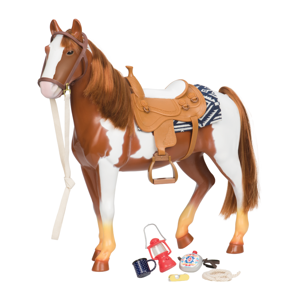Pinto Horse all components