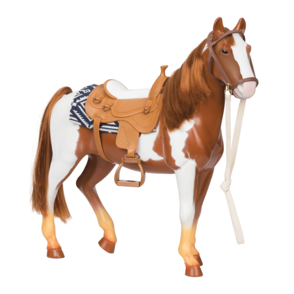 Pinto Horse side view