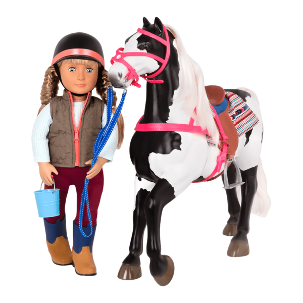 American Paint Horse with Lorelei walking