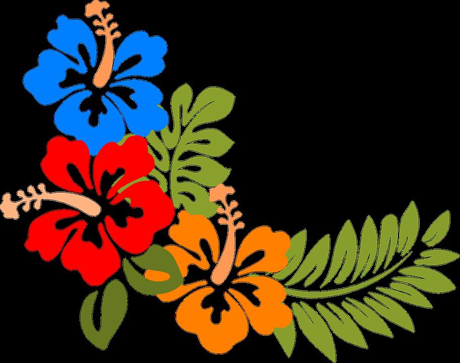 Learn Fun Hawaiian Vocabulary