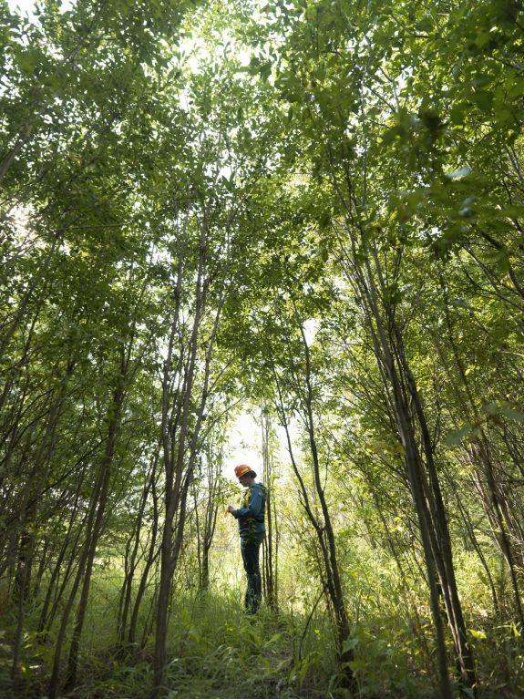 Environmental advisor examining reclaimed land