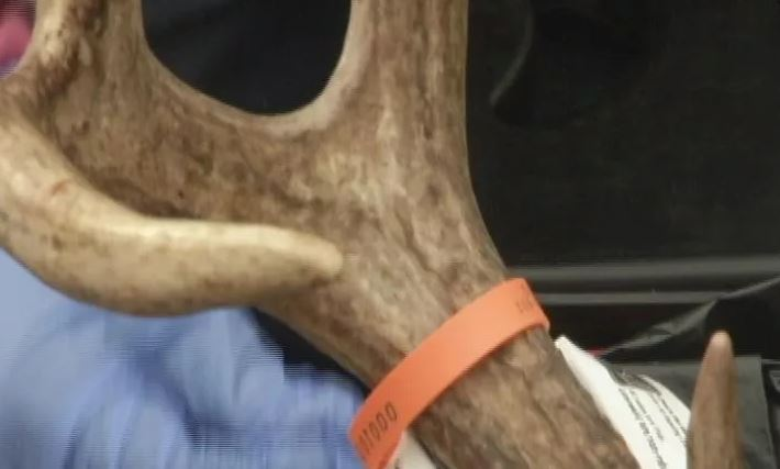 CWD found in a deer harvested from Portage Co. hunt ranch
