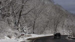 Weather-photo-snowy-trees-and-road