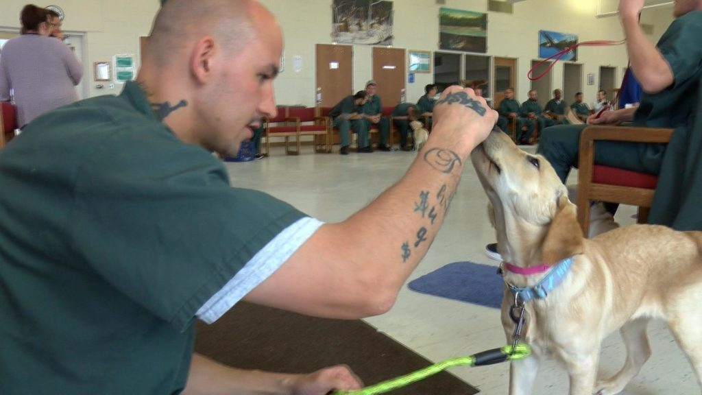 Anthony, an inmate at the Jackson Correctional Institution, does training with his new partner.
