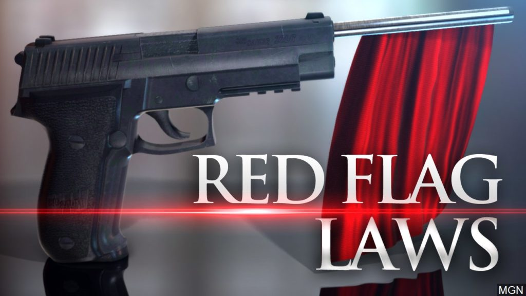 Case Studies Suggest That 'Red Flag' Laws Play a Role in Preventing Mass Shootings